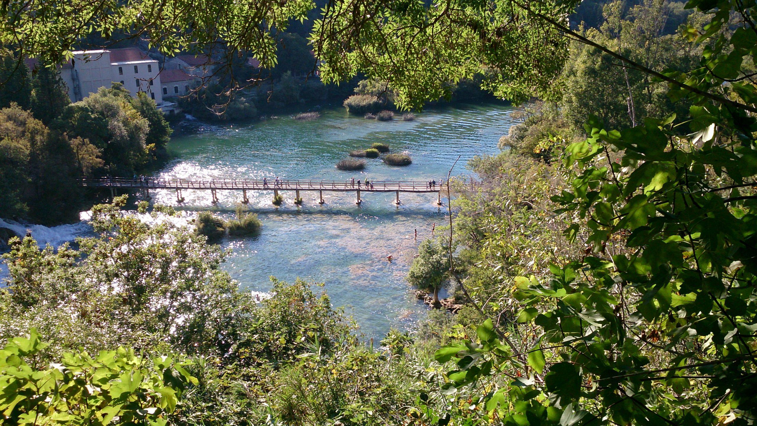 Natural park bridge